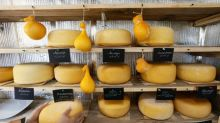 In Siberia, former city dwellers find harmony in cheesemaking