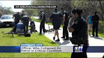 DPD Bicycle Officer In Critical Condition