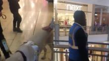 Viral video shows blind shopper being kicked out of mall because of seeing eye dog
