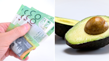 How to sleep inside an avocado for $100
