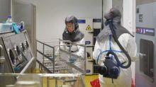 Coronavirus : des chercheurs belges annoncent des résultats prometteurs en adaptant un vaccin contre la fièvre jaune