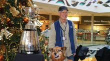 Rusty, Winnipeg Therapy Dog With Glasses, Honoured With Ceremony