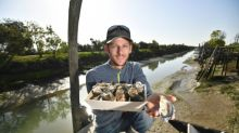 Frenchman invents lemony oysters in time for holidays