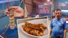 【佐敦美食】廟街附近! 38年的街頭風味 街坊價食盡靚海鮮