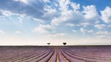10 reasons why the British fell in love with Provence