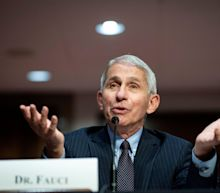 Fauci says a Covid vaccine maybe ready by November but will take months to roll out