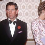 Princess Diana's BBC Panorama interview went down in royal history - but what did the public learn?