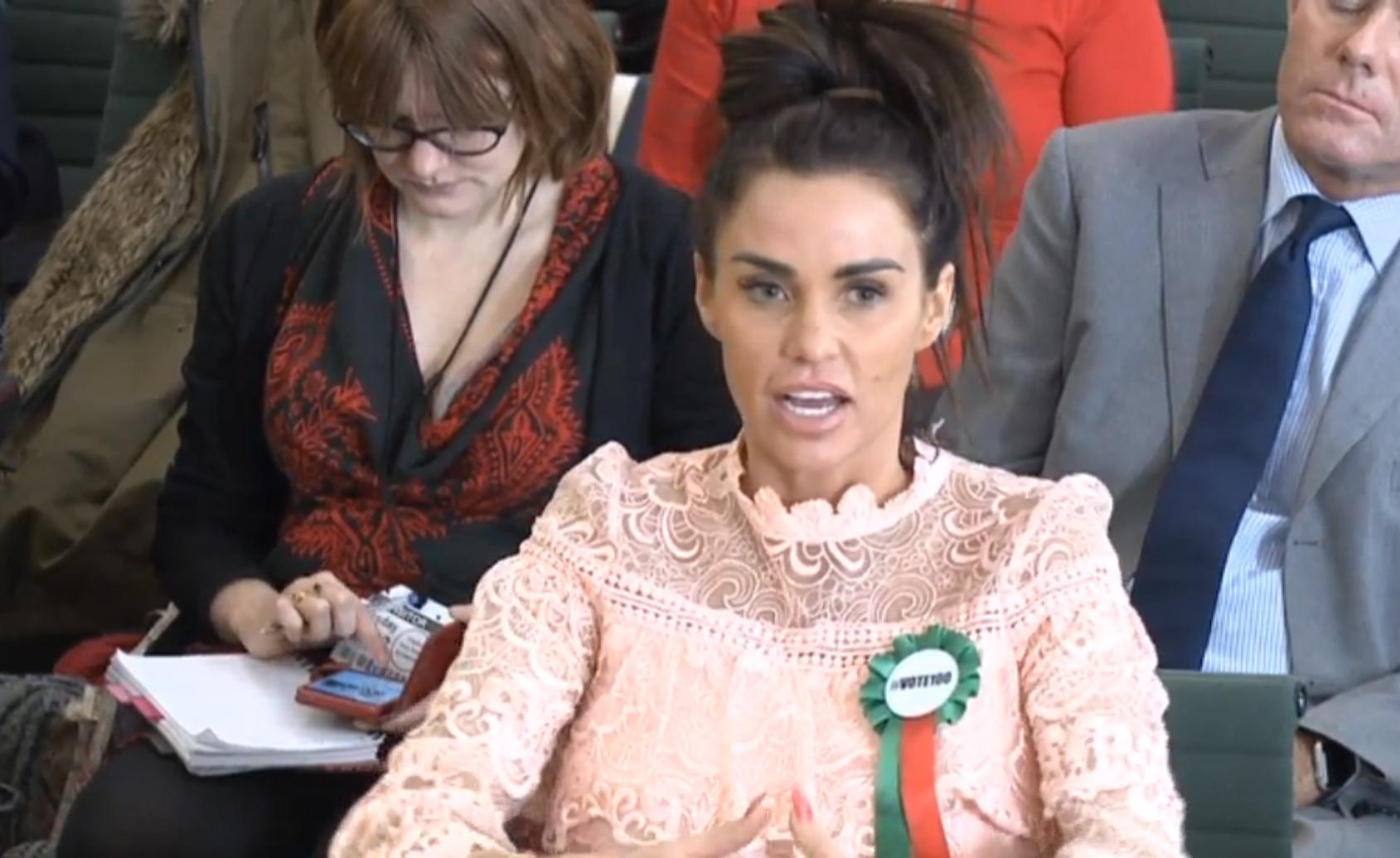 Katie Price, giving evidence to the Commons Petitions Committee at the House of Commons in London, as she calls for online abuse to be made a specific offence.
