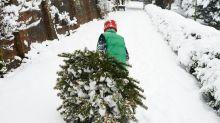 UK Weather: What's The Likelihood Of Snow This Christmas?