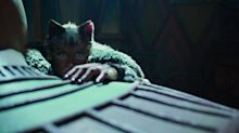 Cats Director Claims We May Have Missed The Film's Political Message
