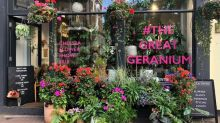 The East End florist who brought bright geraniums to Chelsea's Bullring Gate