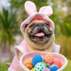 From Easter egg hunts to ALS Walk: Some things to do in the Triangle, Fayetteville this weekend