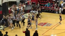 Nasty fight breaks out in UNLV-Utah State women's game (Video)