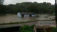 Rains pound Karnataka: Tourists must avoid Kodagu, entry into Ranganathittu barred