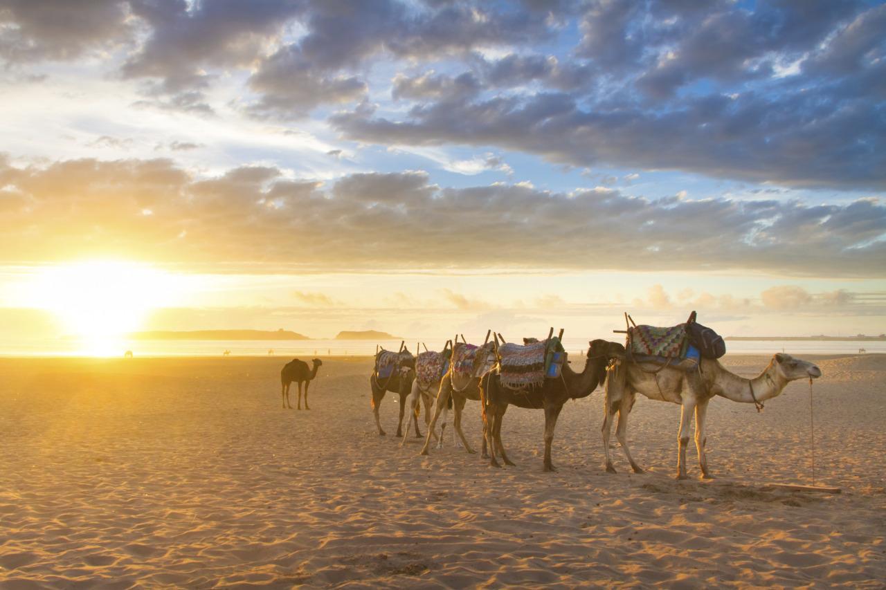 The Ultimate 10-Day Trip Through Morocco