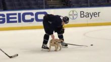 St. Louis Blues Welcome Their Adorable Teammate to Practice