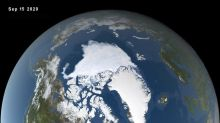 'A crazy year up north': Arctic sea ice shrinks to 2nd-lowest level on record