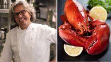 """Lo chef Locatelli: """"Giusto alleviare la sofferenza delle aragoste, le ho sentite gridare"""""""