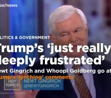 Newt Gingrich and Whoopi Goldberg go at it on 'The View' over Trump's 'lynching' comments