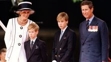 Prince William and Prince Harry Say They 'Couldn't Protect' Their Mom Princess Diana From Death