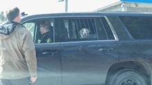 Dog gets carted off in cop car, becomes internet hero