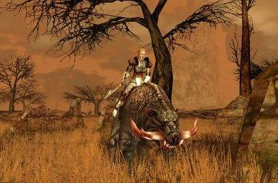 Will Darkfall be important to the genre?