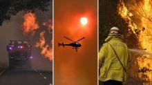 Fourth person found dead as fierce bushfires continue to burn