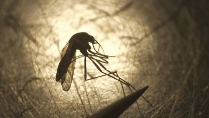States issue warning over deadly rare virus