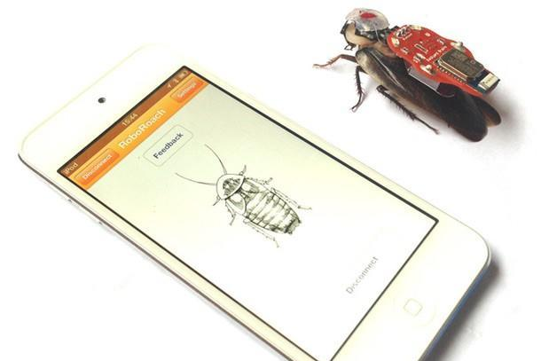 RoboRoach surgery kit comes to Kickstarter: a remote control for real cockroaches