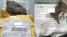 The USDA has identified some of the mystery seeds sent unsolicited from China as herbs like rosemary and sage