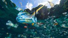 Este será el sonido del océano si seguimos contaminándolo con plástico