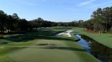 Go or not? The field seems to favor laying up at Sawgrass' new 12th