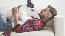 Most men feel 'emotionally closer' to their dogs than other humans