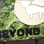 Beyond Meat and PepsiCo team up for plant-based snacks