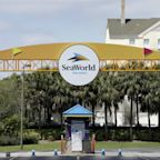 Disney, SeaWorld approved to reopen Florida parks in the summer