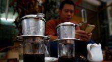 Rainfall, strong winds threaten Vietnam coffee harvest