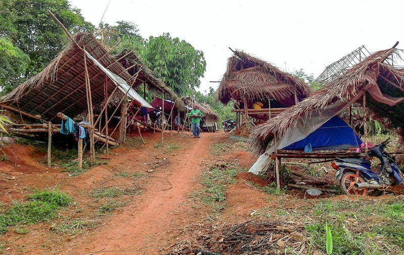 """orang asli The orang asli in pekan will give their support to prime minister najib abdul razak and not to someone whom they described as an """"old and weak tree."""