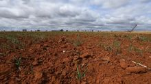 Drought pushes Nufarm to $15.6m loss