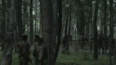 Hizbul commander shot dead in encounter, arms recovered