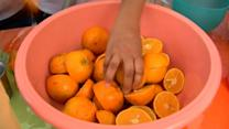 Raw: World Orange Juice Record Set in Mexico