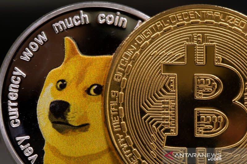 rege bitcoin