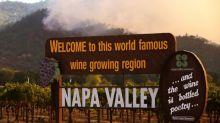 Waldbrände zerstören Weinberge im berühmten Napa Valley