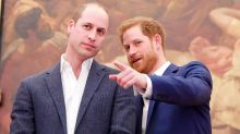 Prince Harry Addresses Rumored Rift Between Him and Prince William: 'Inevitably Stuff Happens'
