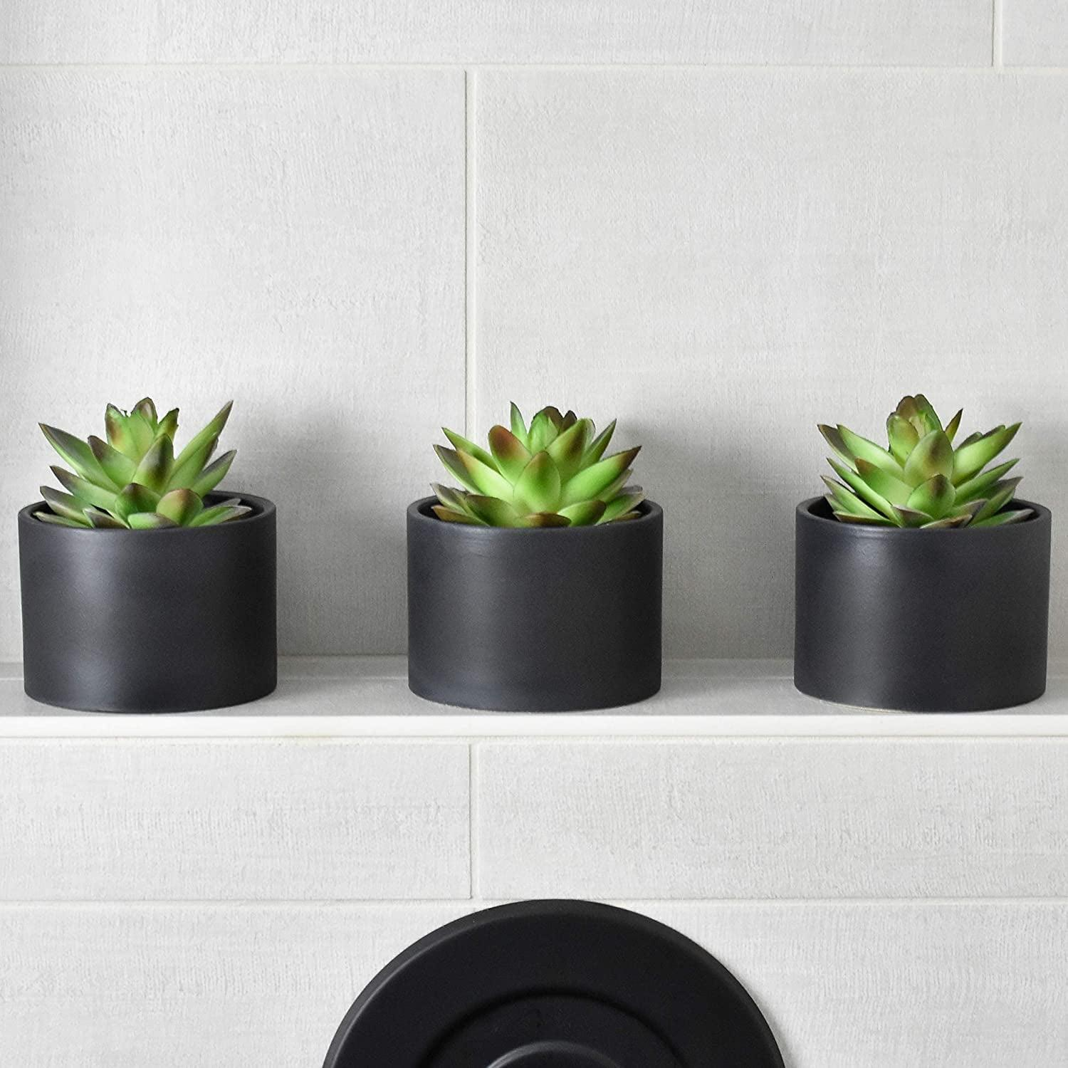 <p>Add these cute <span>Seeko Succulents</span> ($25) to your bathroom.</p>