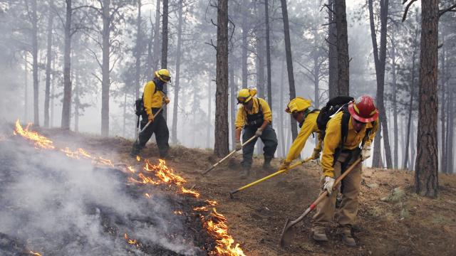 Just Explain It: Wildfires On The Rise