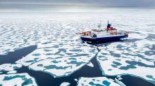 El Ártico está experimentando un nuevo clima por el calentamiento global