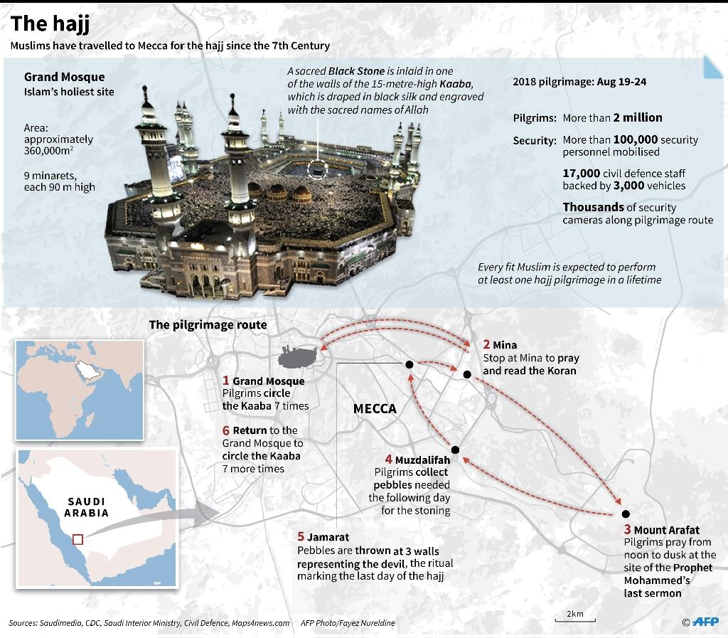 Graphic on the annual hajj (AFP Photo/Gal ROMA)