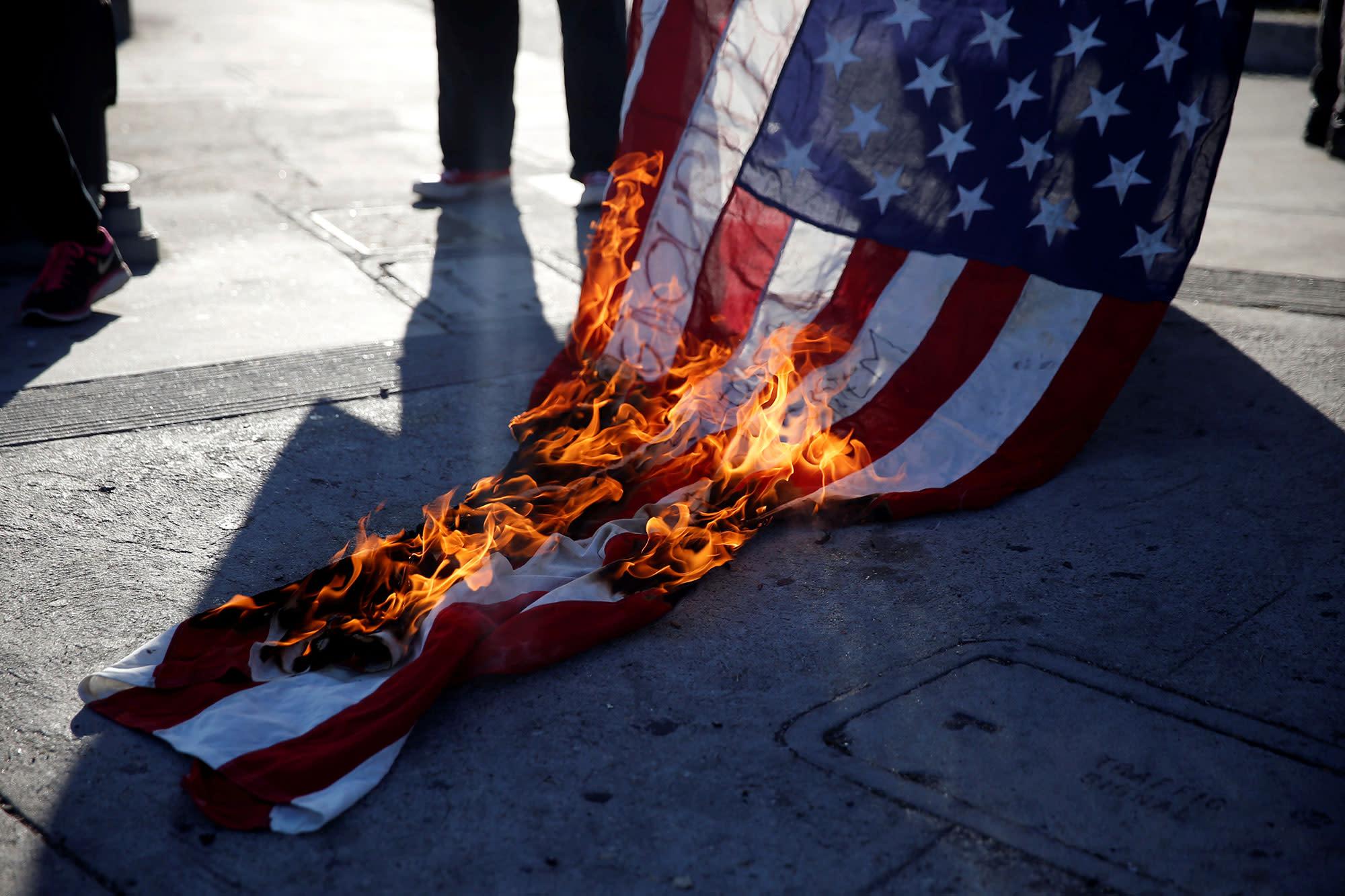 ученица, картинки флаг в огне видов лейкоцитов