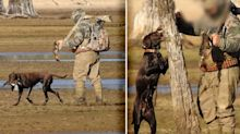 'Psychological terror': Investigation underway after duck hunting video surfaces