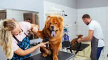 2 Stocks to Play the Pet Care Trend